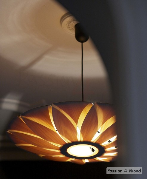 Bistro l' armagnac - Passion 4 Wood - Pendal lighting in wood in entrance - Lotus