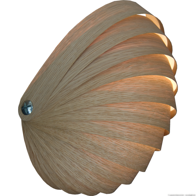 Nautilus_wandlamp-light in the shape of a nautilus - oak.png