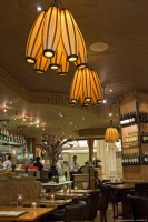 Cotton - pendant light - passion 4 wood - tulip and walnut wood - decorative lighting ideal for bars, restaurant or for the home