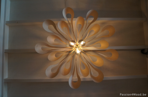 Ipaki XL - passion 4 wood lighting _3