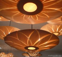 Collection of lotus lamps in tulip wood