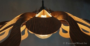 Passion4Wood - Ipaki lamp _65